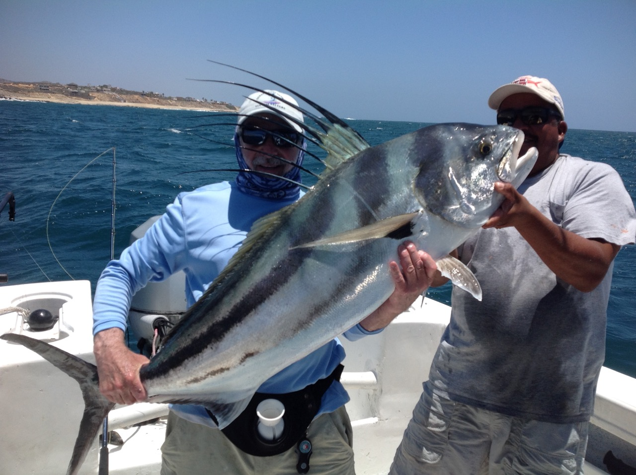 Fishing pictures hooked on fishing charters stratford for Get hooked fishing charters